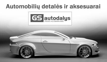 automobilis_detales111